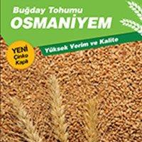 osmaniyem